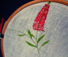 Bottle Brush Embroidery